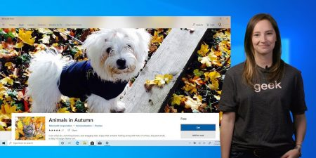 Windows 101: Download photo themes for your Windows 10 background